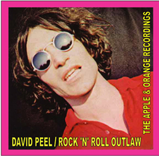 david_peel_rock_n_roll_outlaw.jpeg